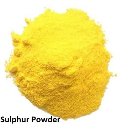 Sulphur Powder 1 kg For Snake ,Insect ,Fungicide, and Pesticide for Plants and Garden