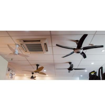 Rubine Elegant Vasto Fan With Light 43 Inch